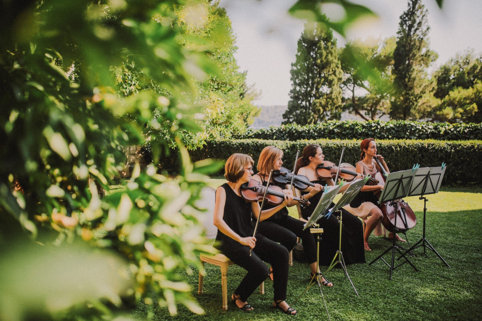 This photo shows the musicians at the wedding ceremony. They are in a beautiful garden. They are all wearing black. There are three violins and a cello.